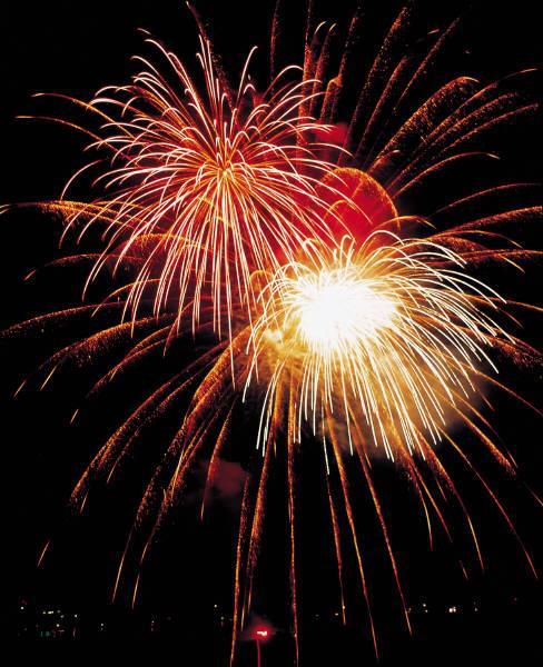 ny års hälsningar Nyårshälsningar till dig   Vykort, födelsedagskort, grattiskort  ny års hälsningar